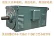 Y112M-2高效节能电动机