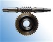 供应标准及非标准蜗杆