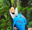 葡萄树电动修枝剪,葡萄枝电剪刀