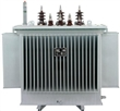 四川变压器 成都变压器 川变为你提供优良的品质和优质的服务