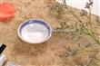 厂家直销高温日用陶瓷餐具 镁质瓷陶瓷餐具 批发