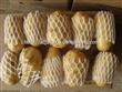供应保鲜土豆优质荷兰土豆