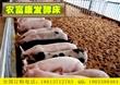 北京西城区发酵床养猪菌种多少钱 哪里有卖发酵床养猪用的菌种