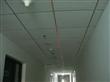 裁床房用的雷射定位灯 制衣辅助激光标线仪 木工机械配件