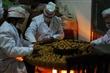 朱昌牌核桃仁、天麻、莲子、纯手工绿色产品