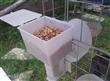 厂家直销鸽用自动食槽 肉鸽 鸽子自动料槽 自动食盒 节粮食盒