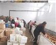 安丘金龙食品常年供应无公害保鲜大姜优质辛辣蔬菜水洗姜