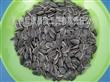 葵花籽1121