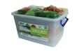 西安箱装新鲜礼品蔬菜,箱装蔬菜/高档礼品蔬菜/西安箱装蔬菜/西安礼品蔬菜