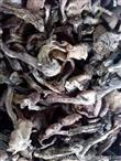 哪里批发食用菌最便宜宁安采珍源天然食品有限责任公司