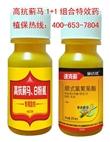抗性蓟马、白粉虱1+1杀虫剂 防治蓟马白粉虱黄金组合特效药