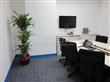 绿化租花服务公司,广州花卉租赁,植物租赁,花木租赁,绿化管理养护服务