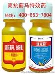 寿光抗性蓟马1+1杀虫剂 专杀蓟马特效药 销售最好的蓟马药