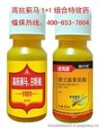 豆角蓟马特效杀虫剂 专杀蓟马最好药 特效打蓟马最有效的药