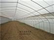 全钢架蔬菜大棚,温室大棚建造