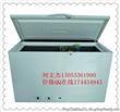 山东淄博扩散吸收式燃气冰箱冰柜LPG&Kerosene &Electrical