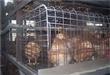 选购最好的青年鸡 力荐鹤壁红十字禽业青年鸡养殖霸主