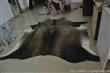 牛皮地毯|整张牛皮地毯批发|进口牛皮地毯直销|巴西牛皮地毯厂家