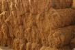 供应床垫用椰丝