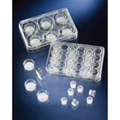 培养皿-Nunc插入式细胞培养皿 140629 已灭菌 孔径大小8um-培养皿尽...
