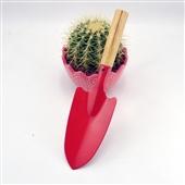 铲子-阳台种植园艺农用工具 小铁铲 花铲 铲子 家庭种花种菜必备工具-铲子尽在阿...