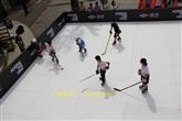 厂家直售仿真滑冰板的性能和仿真滑冰板的寿命
