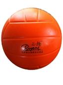 排球-必扬牌BIYANG 义务教育 中考专用 软式排球 软排 海绵球学生用品-排...