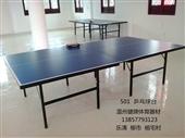 体育用品_健牌体育用品供应 温州乒乓球桌 室外乒乓球 桌乒乓球台厂家 -