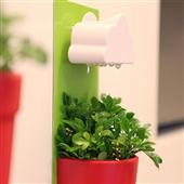 批发采购植物工艺品-曲登新品 云朵花盆 Rainy pot 创意盆栽 下雨壁挂式...